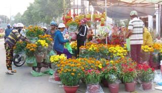 Hội chợ hoa xuân TP. Bến Tre: Kiểng bông nở cung vượt cầu