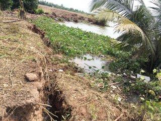 Vĩnh Bình - Chợ Lách: Tập trung khắc phục vụ sạt lở đất tại cồn Phú Đa