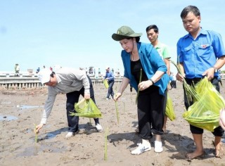 Chủ tịch Quốc hội dự Lễ trồng cây tại điểm cực Nam Tổ quốc