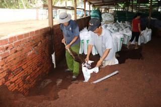 Mở rộng vùng nguyên liệu sản xuất đất sạch