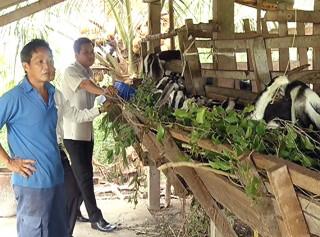 Hợp tác xã nông nghiệp Vĩnh Hòa nâng thu nhập cho xã viên