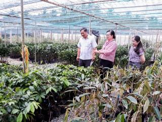 Xây dựng nền nông nghiệp ứng dụng công nghệ cao
