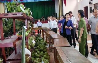 Chủ tịch Quốc hội Nguyễn Thị Kim Ngân đến thăm huyện Chợ Lách và tham quan Lễ hội Cây - trái ngon, an toàn