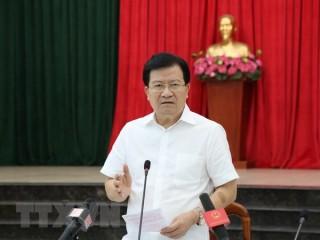 Phó thủ tướng Trịnh Đình Dũng làm Trưởng Ban Chỉ đạo tái cơ cấu nông nghiệp