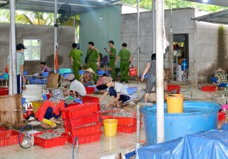 Bắt quả tang cơ sở sản xuất cá khô xả thải ra sông
