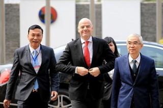 Ông Trần Quốc Tuấn không tranh cử Chủ tịch VFF