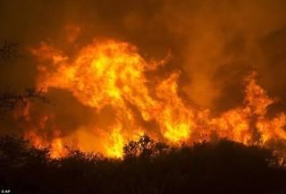 Cháy rừng càn quét dữ dội ở California (Mỹ), 2 lính cứu hỏa thiệt mạng