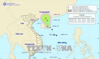 Đã xác định được khu vực nguy hiểm, các địa phương chủ động ứng phó áp thấp nhiệt đới