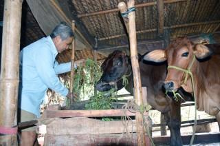 Nâng cao năng lực thoát nghèo bền vững từ đồng vốn nhỏ