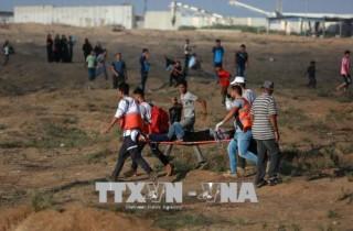 Hơn 180 người Palestine bị thương do đụng độ với binh sĩ Israel ở Gaza