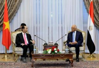 Việt Nam luôn coi trọng quan hệ hữu nghị truyền thống với Ai Cập