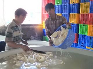 Hợp tác xã Nông nghiệp Định Thủy bước đầu hoạt động hiệu quả