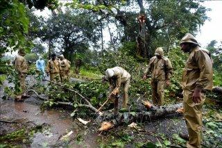 Bão Titli 'càn quét' miền Đông Ấn Độ, ít nhất 57 người thiệt mạng