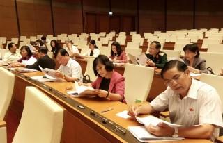 Đoàn đại biểu Quốc hội đơn vị tỉnh thảo luận về nhân sự Chủ tịch nước