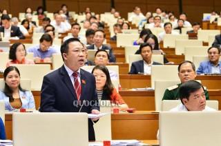 Đại biểu Quốc hội đơn vị tỉnh tham gia thảo luận về kinh tế - xã hội