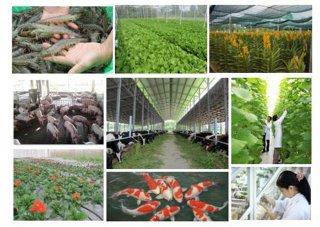 Sơ kết 5 năm Đề án tái cơ cấu ngành nông nghiệp