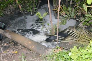 Bắt quả tang cơ sở xả nước thải chưa qua xử lý ra môi trường