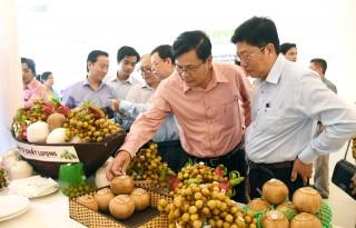 Tập trung phát triển nông nghiệp, nông dân và nông thôn mới