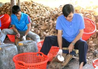 Hợp tác xã Nông nghiệp Định Thủy đang cần vốn đầu tư sản xuất
