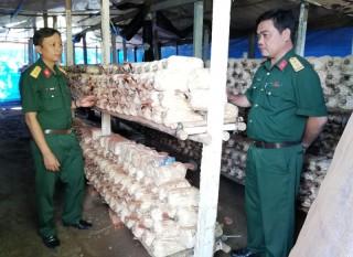 Ban Chỉ huy Quân sự TP. Bến Tre tích cực tăng gia sản xuất