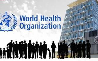 WHO cảnh báo thế giới chuẩn bị cho một đại dịch cúm mới bùng phát