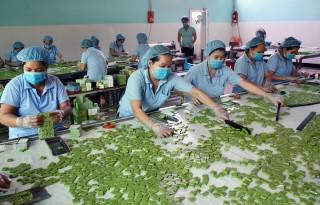 Nâng cao hiệu quả sản xuất, chế biến hàng nông, thủy sản xuất khẩu