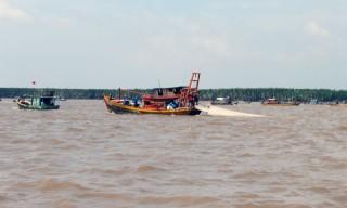 Tăng cường quản lý nguồn sò huyết giống tại bãi biển Thừa Đức