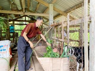 Hưng Phong tìm hướng phát triển bền vững
