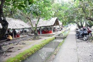 Tết Đoan Ngọ về vùng cây lành, trái ngọt Tân Phú