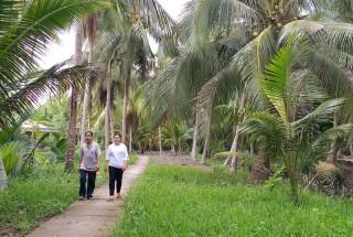 Lễ hội dừa tỉnh Bến Tre lần V năm 2019: Hướng đến sự trải nghiệm đặc sắc