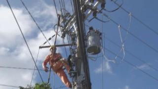 Điện lực diễn tập phòng, chống thiên tai và tìm kiếm cứu nạn năm 2019
