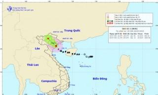 Bão số 2 đổ bộ vào Hải Phòng đến Nam Định