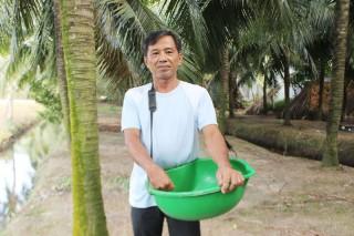 Cựu chiến binh Ba Xuân trồng dừa xiêm xanh làm giàu