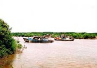 Nguồn thu cho doanh nghiệp thuê cồn Cát Tiên do huyện phân bổ