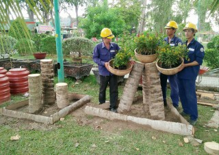 TP. Bến Tre chỉnh trang đón Lễ hội Dừa