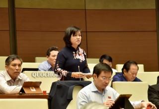 Đại biểu Quốc hội đơn vị tỉnh thảo luận dự án Luật Đầu tư theo hình thức đối tác công tư (PPP)