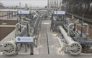 Lãnh đạo Nga, Đức thảo luận về đường ống vận chuyển khí đốt