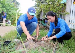 Trồng cây phân tán năm 2019 đạt trên 87%