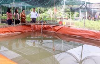 Đa dạng phương án trữ nước ngọt ứng phó hạn mặn