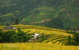 Sắp xếp đơn vị hành chính cấp xã thuộc Hà Giang, Lâm Đồng, Đồng Tháp
