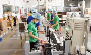 Tập trung phát triển các cụm công nghiệp
