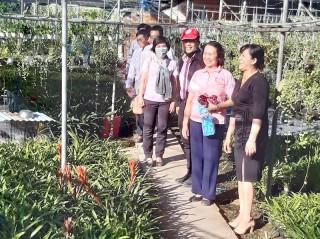Công ty CP Việt Nam tham quan mô hình kinh tế tại tỉnh