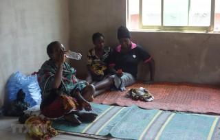 Nigeria: Dịch sốt xuất huyết Lassa bùng phát, hơn 100 người tử vong
