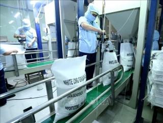 Tạm dừng xuất khẩu gạo từ ngày 24-3-2020