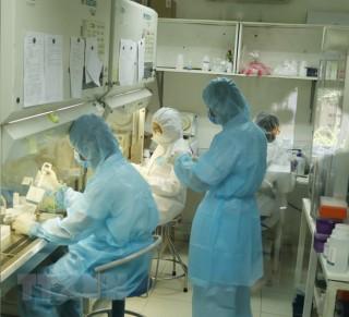 Thêm 3 ca tái dương tính với virus SARS-CoV-2 tại TP. Hồ Chí Minh