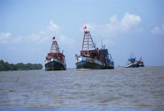 Hội Nghề cá VN phản đối Quy chế cấm đánh bắt cá trên biển Đông