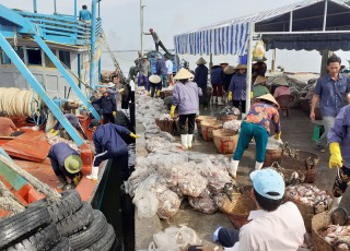 Bình Thắng đẩy mạnh phát triển kinh tế biển
