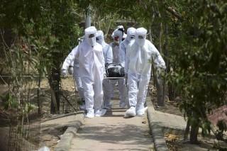 COVID-19 tới 6 giờ sáng 29-6-2020: Thế giới trên 500.000 ca tử vong; nhiều nước hoãn tái mở cửa