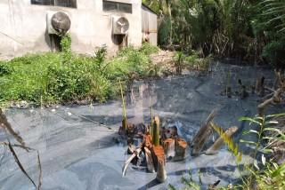 Khắc phục ô nhiễm môi trường khu vực rạch Sáu Rẫy, xã Mỹ Thạnh An