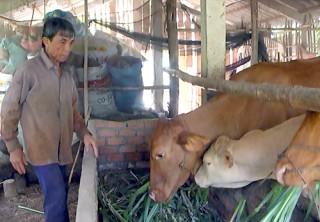 HĐND tỉnh giám sát kết quả xây dựng nông thôn mới và giảm nghèo bền vững